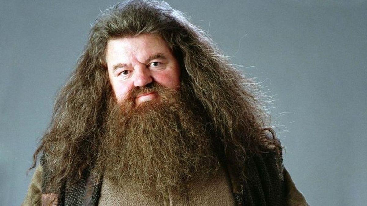 Una osteoartritis deja al actor que interpretó a Hagrid en Harry Potter sin caminar