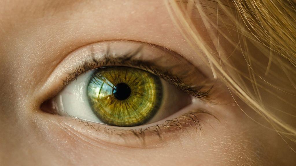 El líquido ocular, clave para predecir precozmente  el Alzheimer