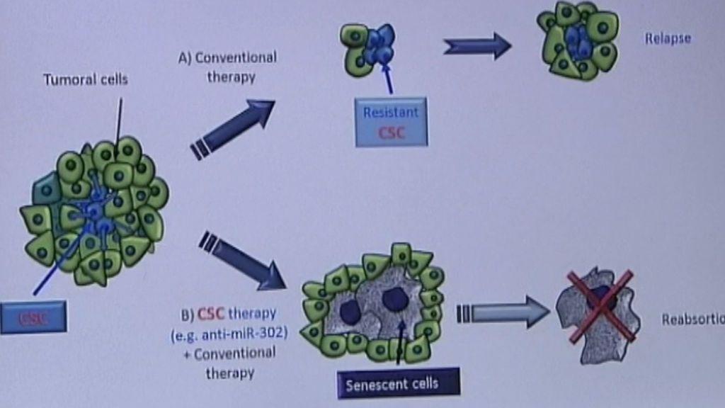 Desarrollan un nuevo fármaco contra el cáncer agresivo de pulmón