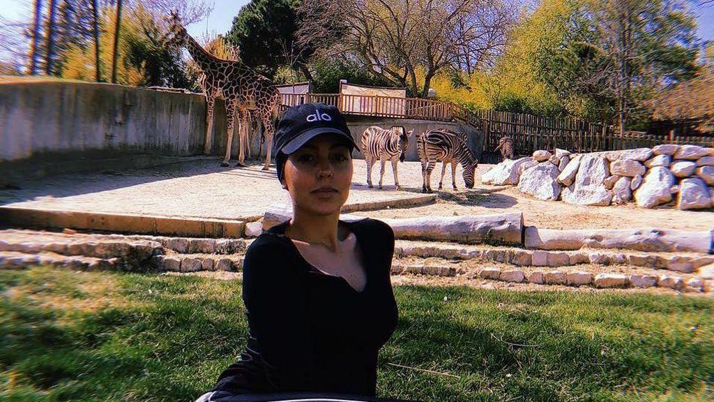 """El divertido plan familiar de Georgina Rodríguez en Madrid: """"Feliz fin de semana desde el Zoo"""""""