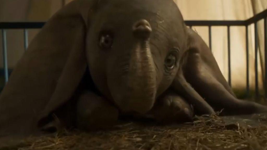 Tim Burton regresa a un Dumbo de carne y hueso