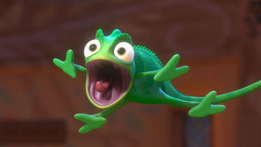 Cómo son los primeros segundos de vida de un camaleón: así nacen estos animalitos