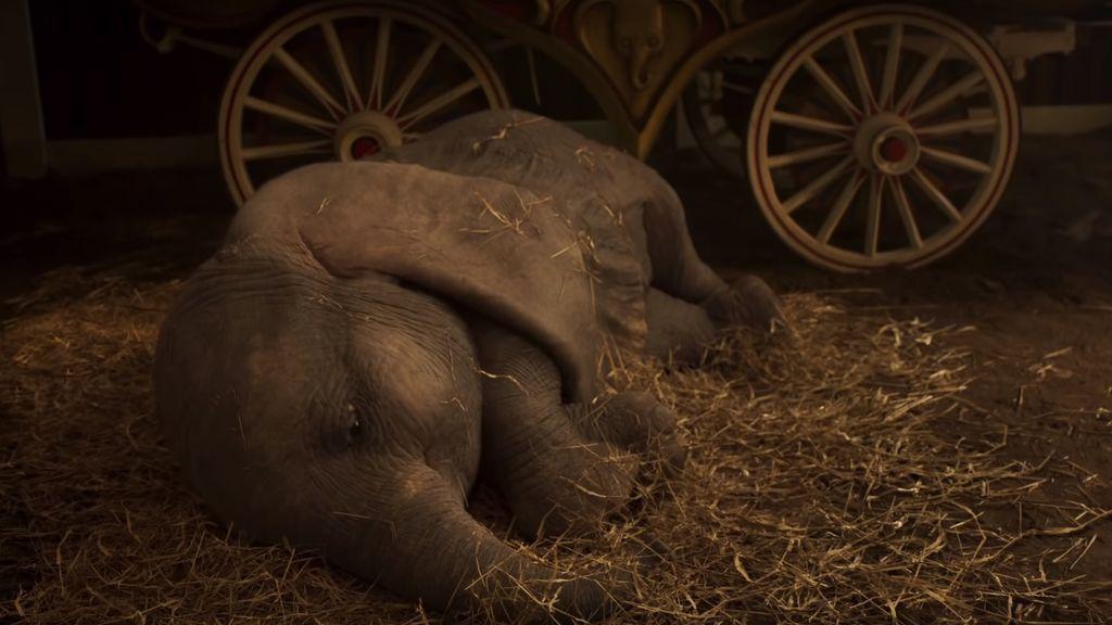 La triste y circense vida del elefante que inspiró Dumbo
