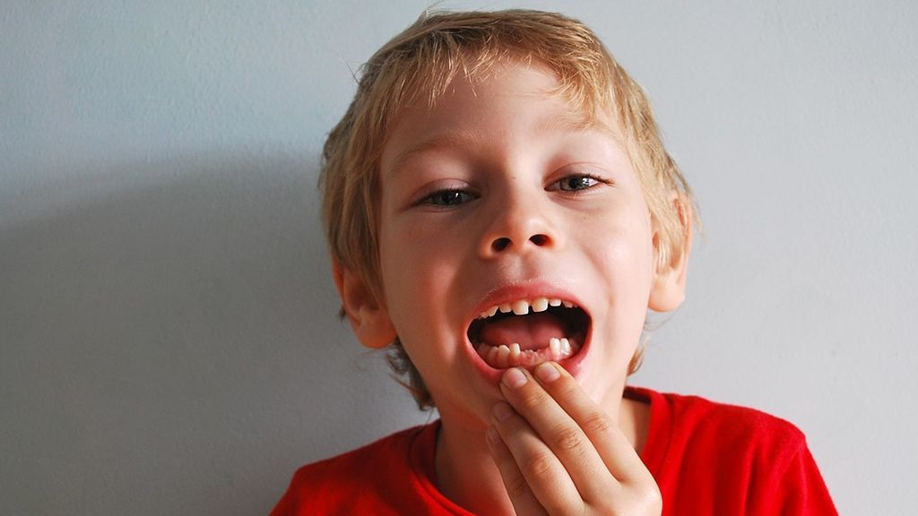 ¿Guardas los dientes de leche? Podrían salvarte la vida