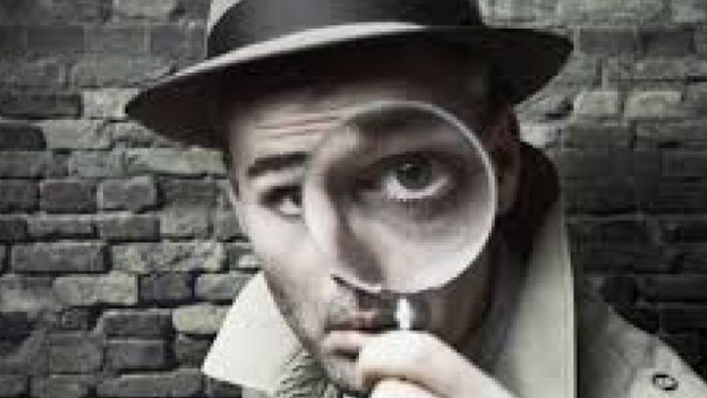 Blanqueo, asesinatos, engaños: la profesión de detectives no sabe de crisisd