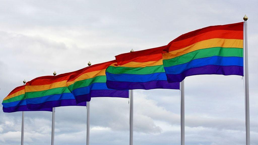 El Colegio de Psicólogos de Madrid muestra su rechazo a las pseudoterapias destinadas a 'curar' la homosexualidad