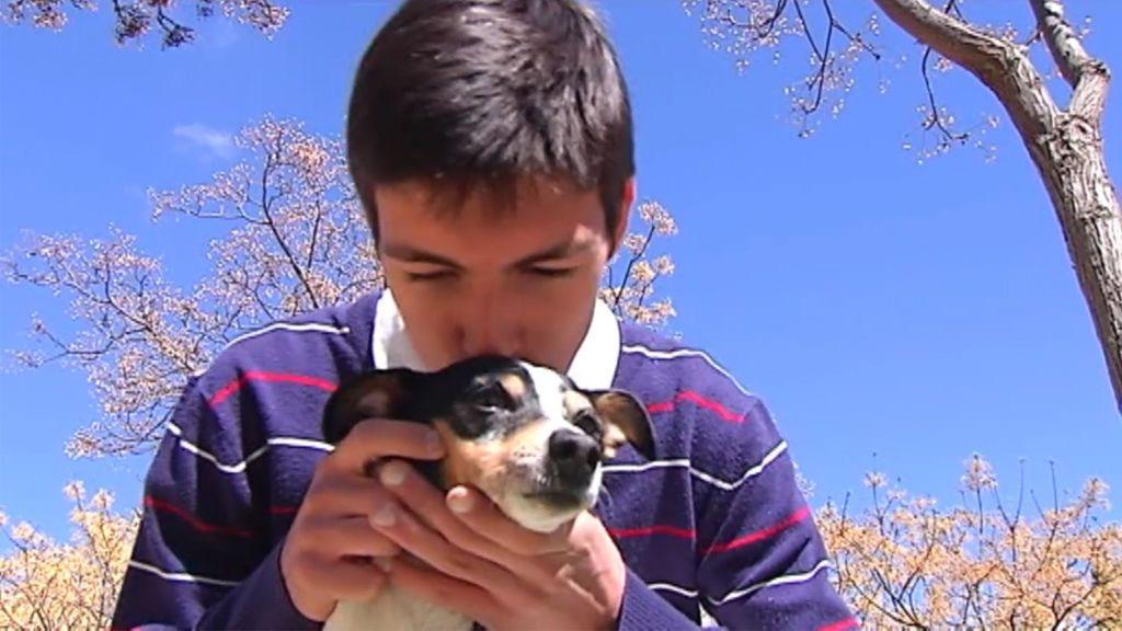 El feliz reencuentro de una perra con su dueño tras pasar tres años perdida