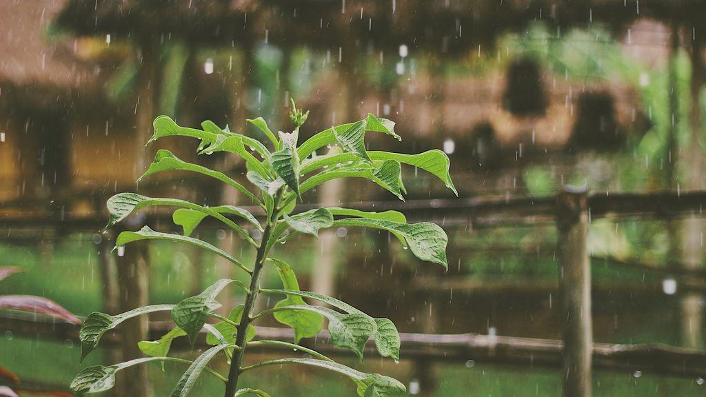 Abril seguirá inestable con NAO negativa:  lluvias, tormentas y temperaturas bajas