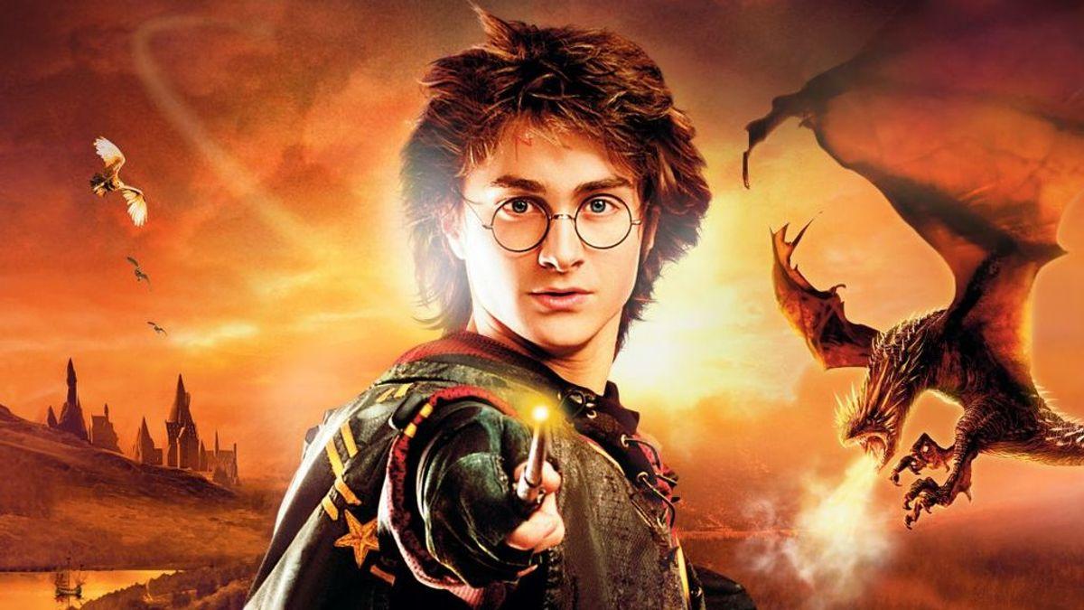 'Queman libros': una reflexión sobre los curas que destruyeron ejemplares de Harry Potter