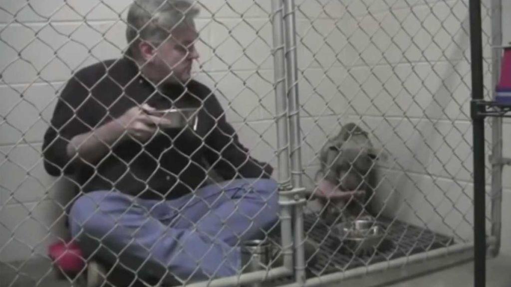 El curioso método de un veterinario para que un perro maltratado vuelva a comer
