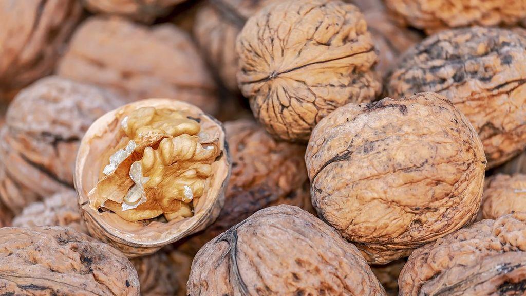 nuts-4062624_960_720
