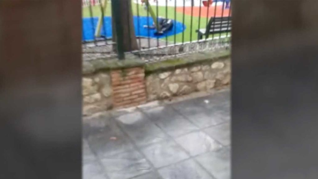 Un muerto por dos disparos en la cabeza en un posible ajuste de cuentas por drogas en Granada