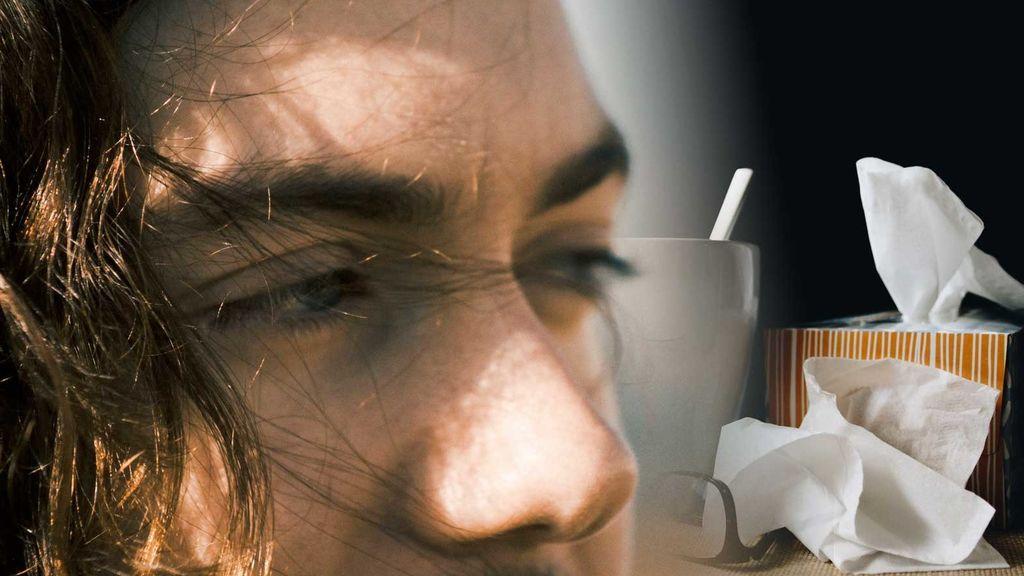 La mejor defensa contra la alergia, los pelos de la nariz