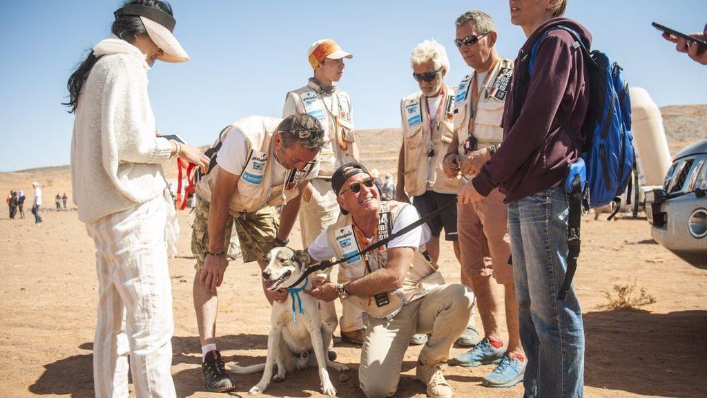 Cactus, el perro que corre en maratones