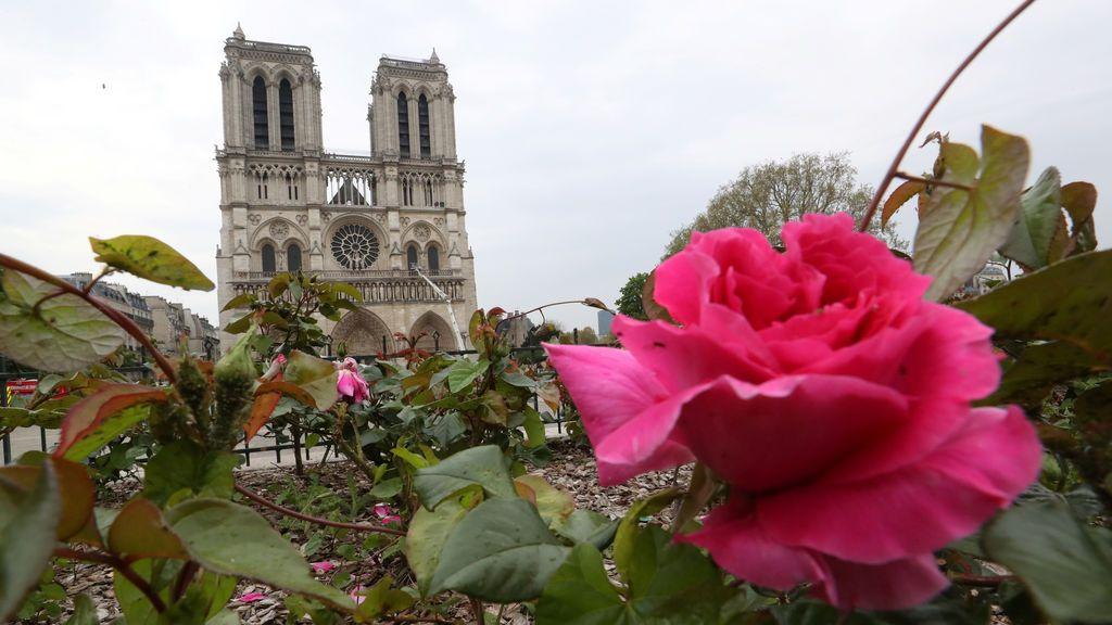 Políticos y millonarios  comienzan una carrera para recabar fondos para la reconstrucción de Notre Dame de París