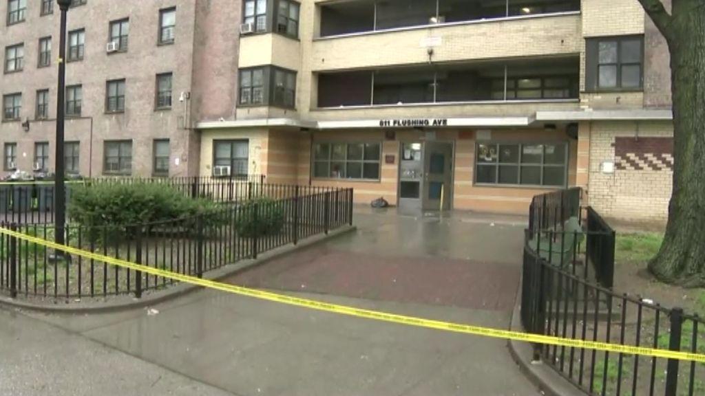 Detienen a un hombre en Nueva York acusado de asesinar a una mujer embarazada a la que intentó decapitar