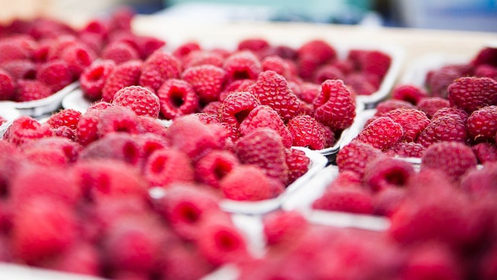 Alimentos que te ayudan a perder grasa