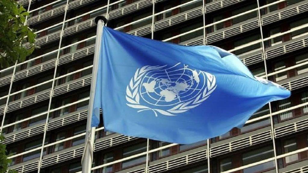 La ONU advierte: la resistencia de medicamentos podría causar 10 millones de muertes al año en 2050