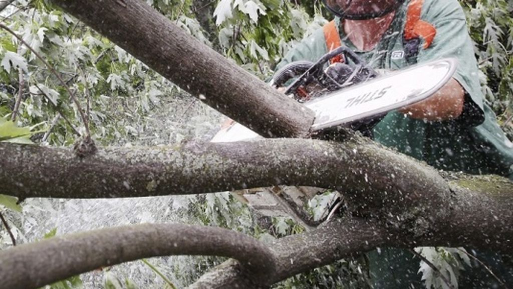 En el Día del Trabajo muere un operario talando madera en Oia