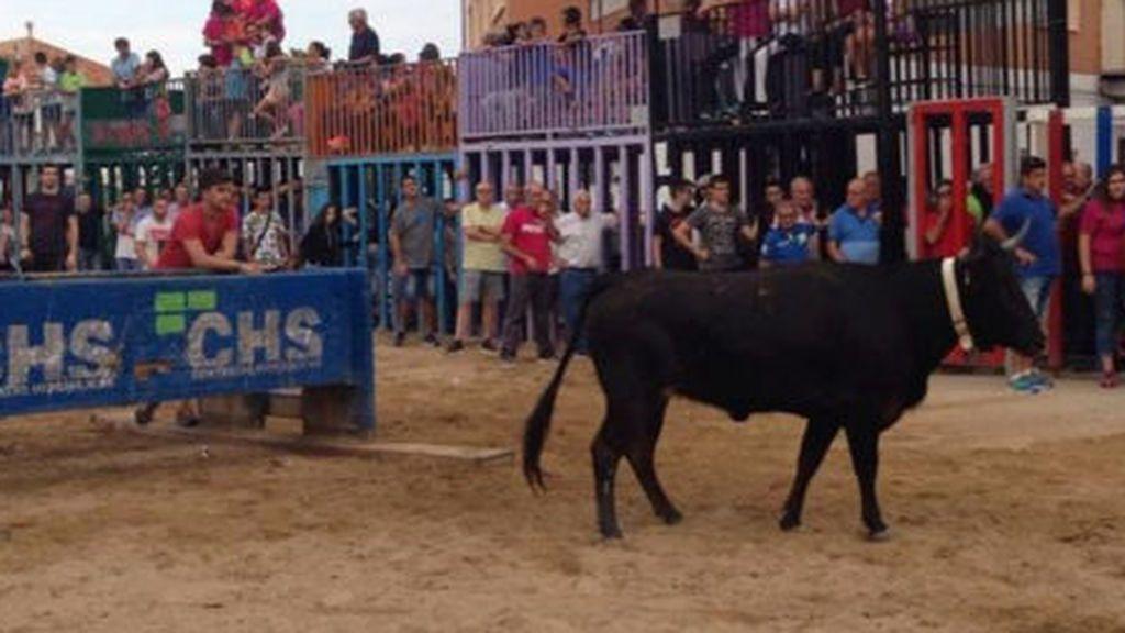 Un nuevo muerto en fiestas por asta de toro, esta vez en Xilxes