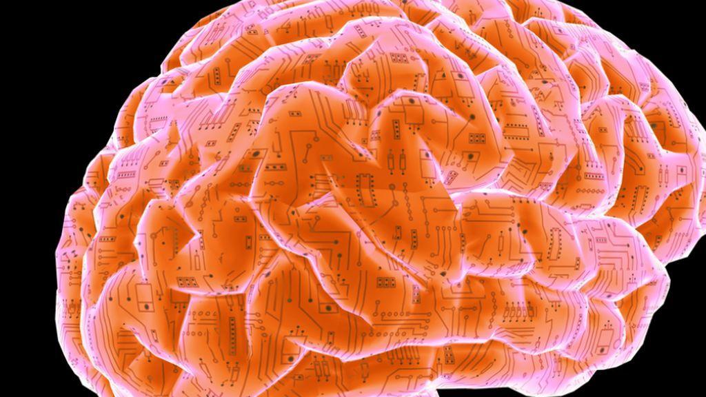 El cerebro siente y cura: lo que desconoces del órgano que controla tu cuerpo