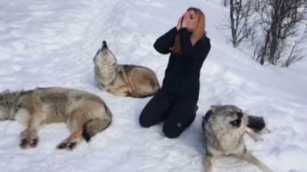 Una mujer aulla a unos lobos y le responden
