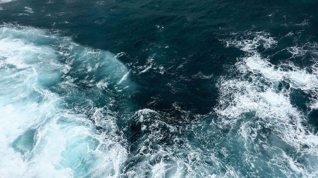 Nueva forma de vida en el Océano Pacífico que respira arsénico en vez de oxígeno