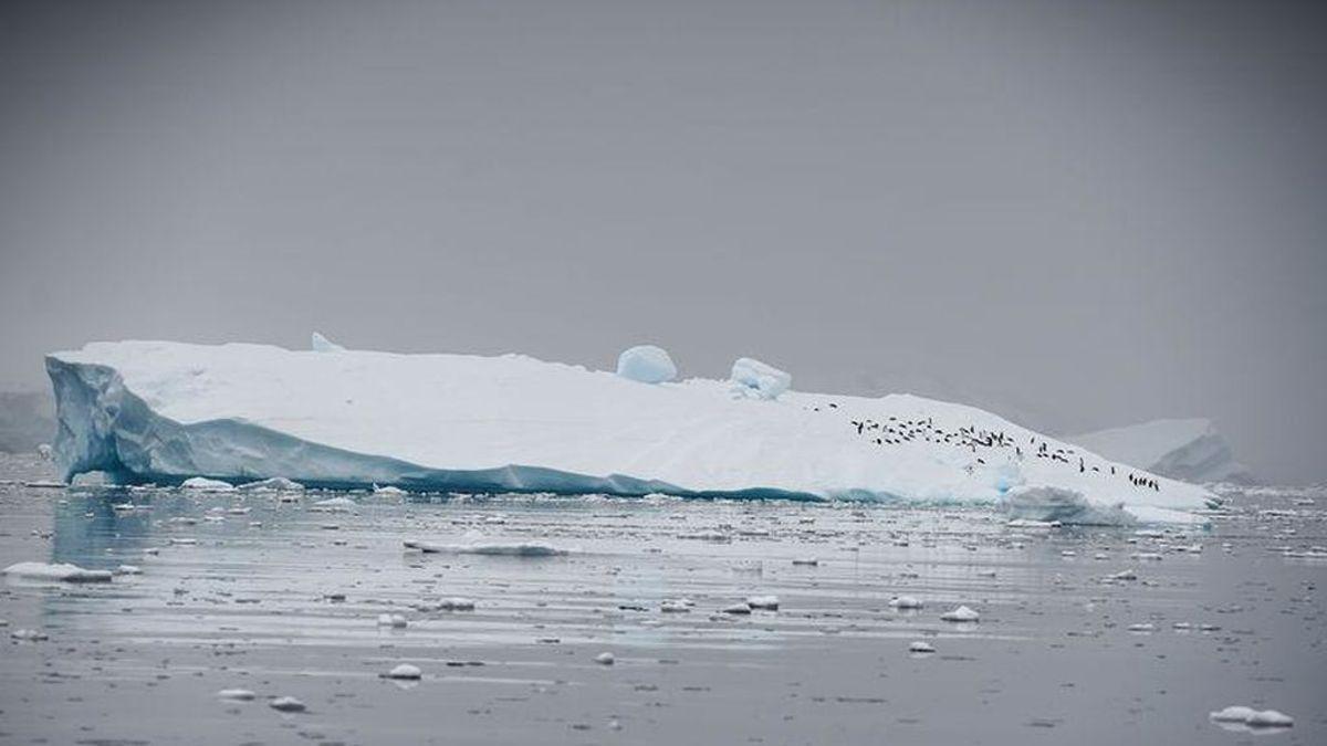 La Antártida pierde hielo cinco veces más rápido que en los años 90