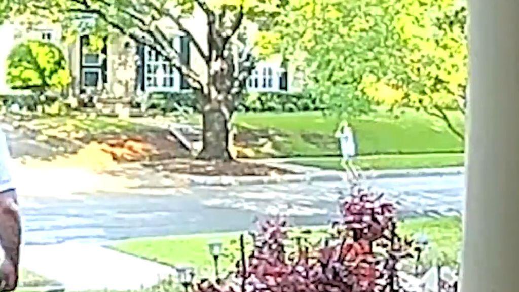 Secuestran a una niña de 8 años mientras caminaba con su madre por la calle en EE.UU