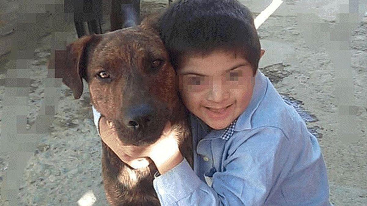 Denuncian el envenenamiento del perro guía de un niño con síndrome de Down (
