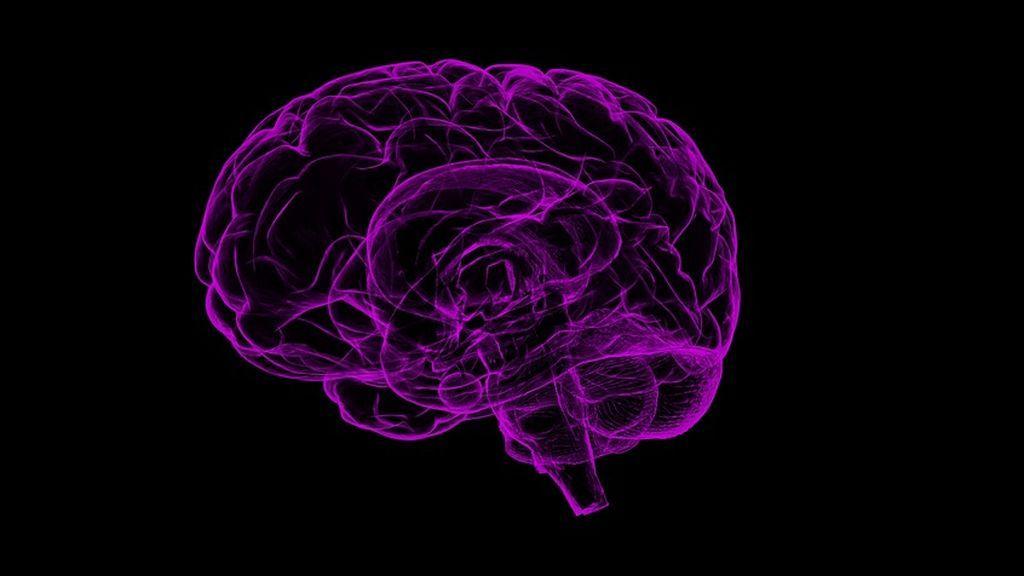 Potenciar los recuerdos positivos y disminuir los negativos podría ser posible estimulando diferentes partes del cerebro