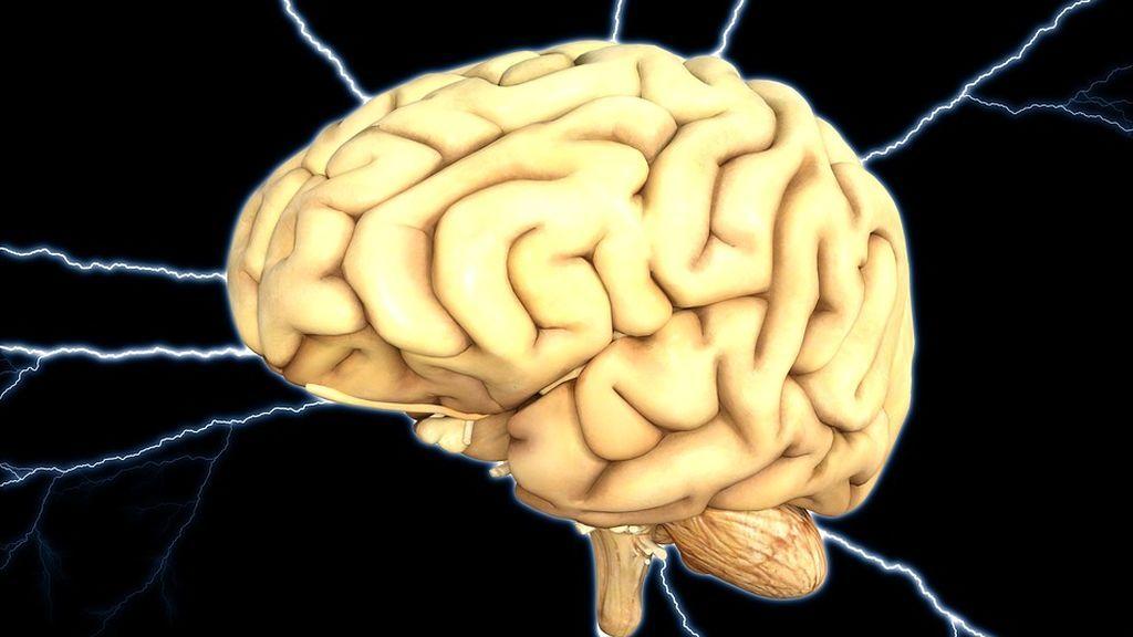 Las neuronas siguen formándose a partir de los 90 años aunque la persona tenga Alzheimer
