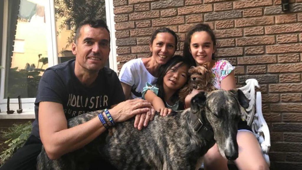 Una familia se anima a adoptar a Tucco, el galgo que fue abandonado dos veces seguidas