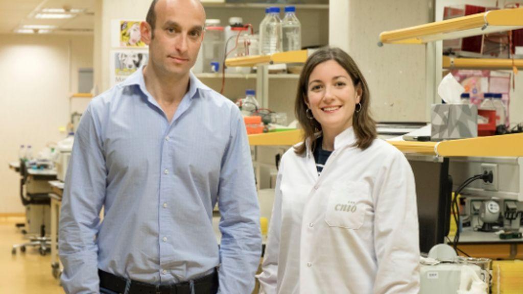 Nabil Djouder, jefe del Grupo de Factores de Crecimiento, Nutrientes y Cáncer del CNIO, y Almudena Chaves-Pérez, investigadora predoctoral
