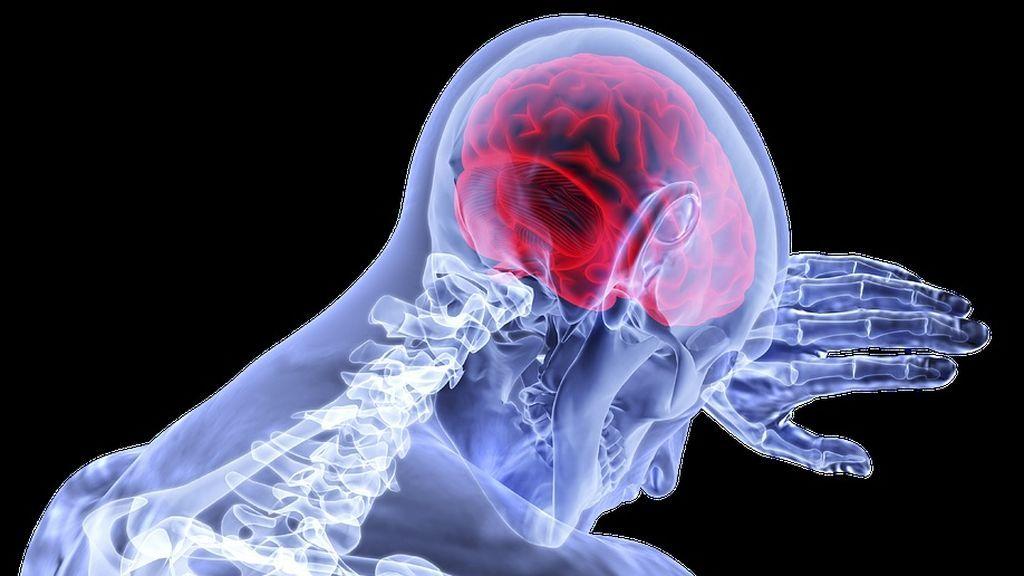 Alerta en Hawái: aumenta el número de infectados por un parásito que invade el cerebro