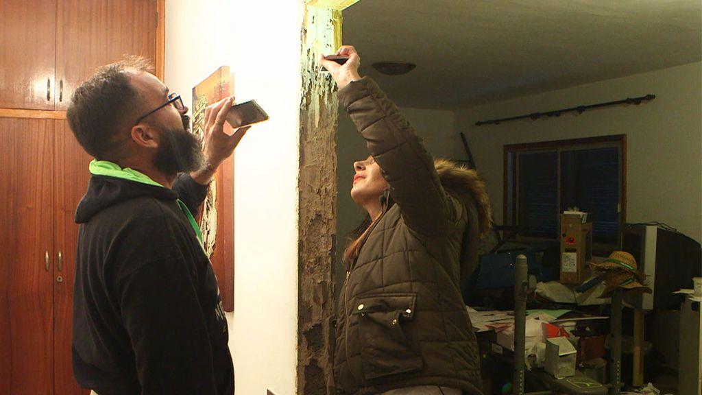 La termita americana azota Tenerife: Se come los muebles, las puertas y hasta los cimientos de las casas