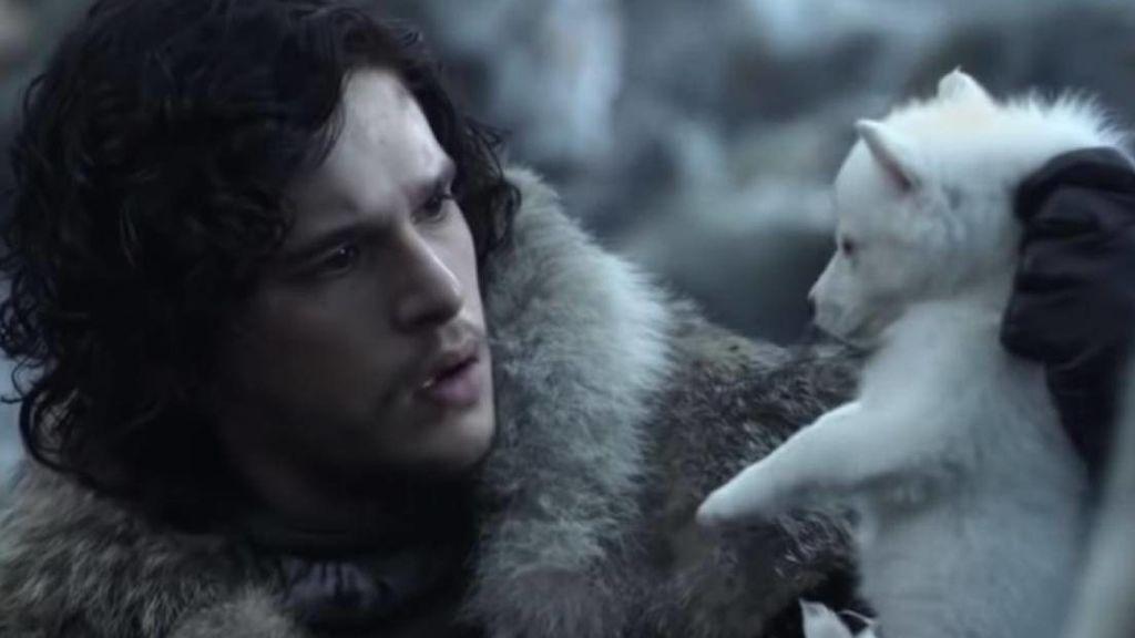 'Juego de tronos' podría ser responsable del abandono masivo de perros Huskies en el Reino Unido