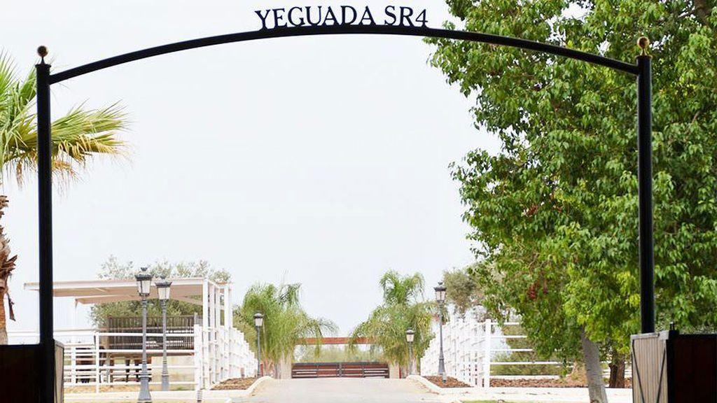 entrada-yeguada-2