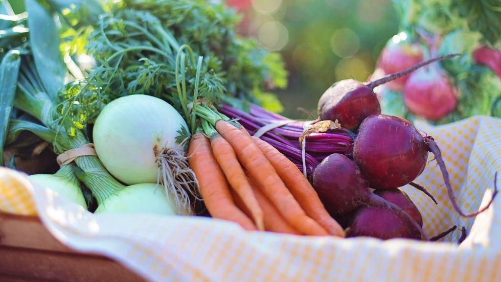 Dieta Mediterránea para salvar el planeta