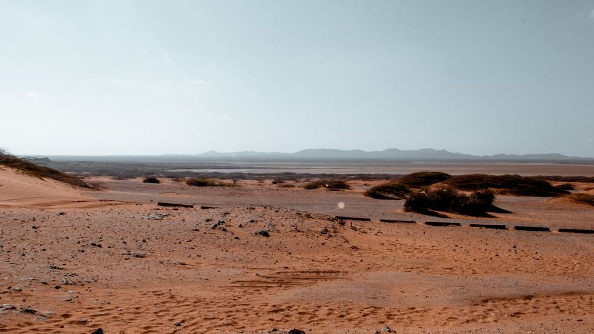 El desierto puede avanzar 30.000 metros cuadrados en España en los próximos 30 años