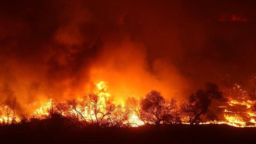 Los incendios siguen implacables:  34.980 hectáreas  arrasadas de enero a mayo