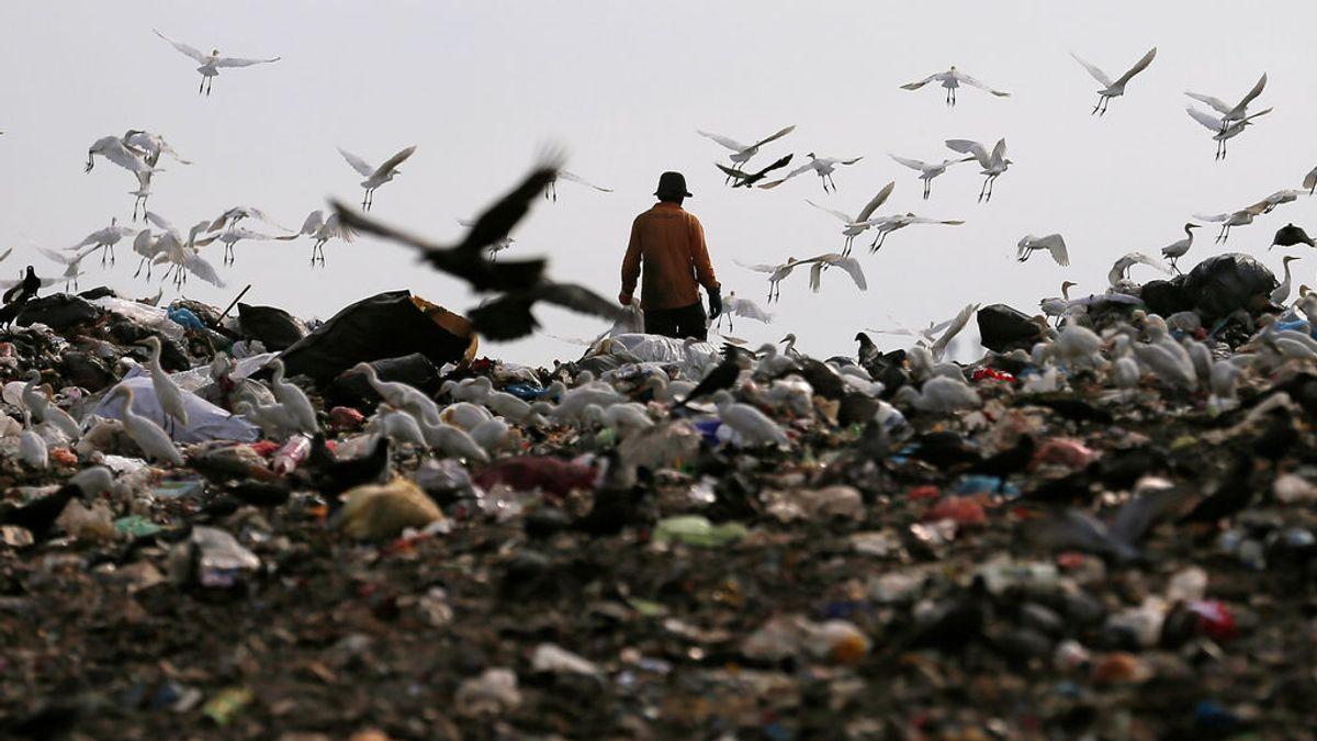 La marea de plásticos que destruye nuestro planeta, una preocupación creciente entre los españoles