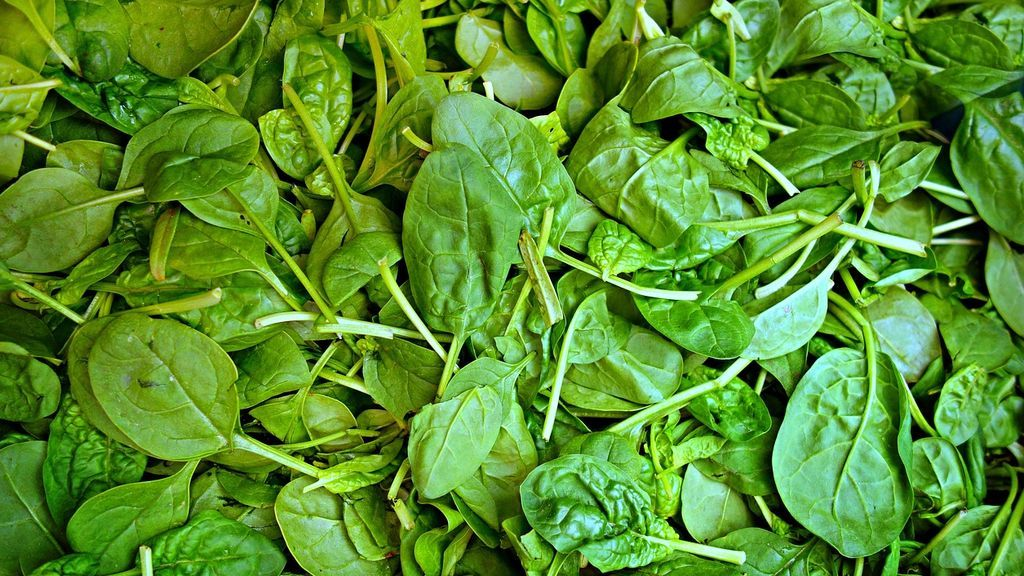 spinach-1522283_1280