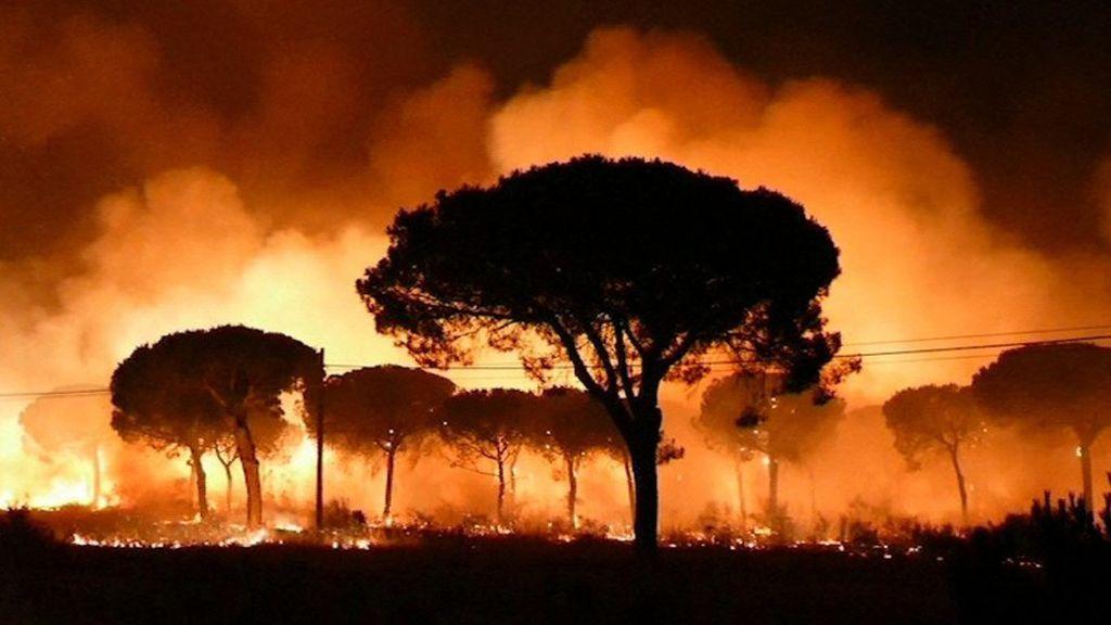 El precio del incendio de Doñana: 96,1 millones de euros