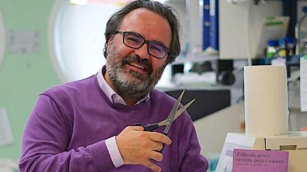 El científico Lluís Montoliu pide que se regule la manipulación genética