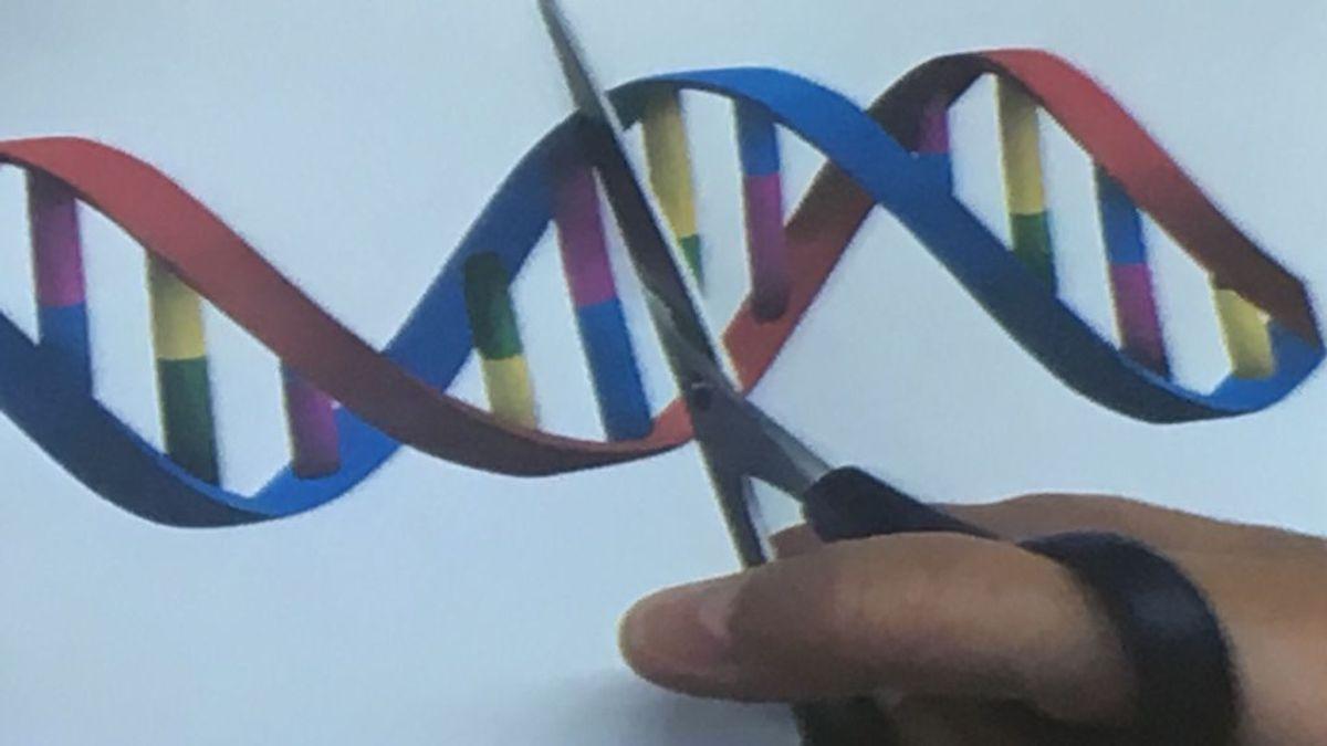 Editar el ADN: la solución genética para reescribir la vida se llama CRISPR