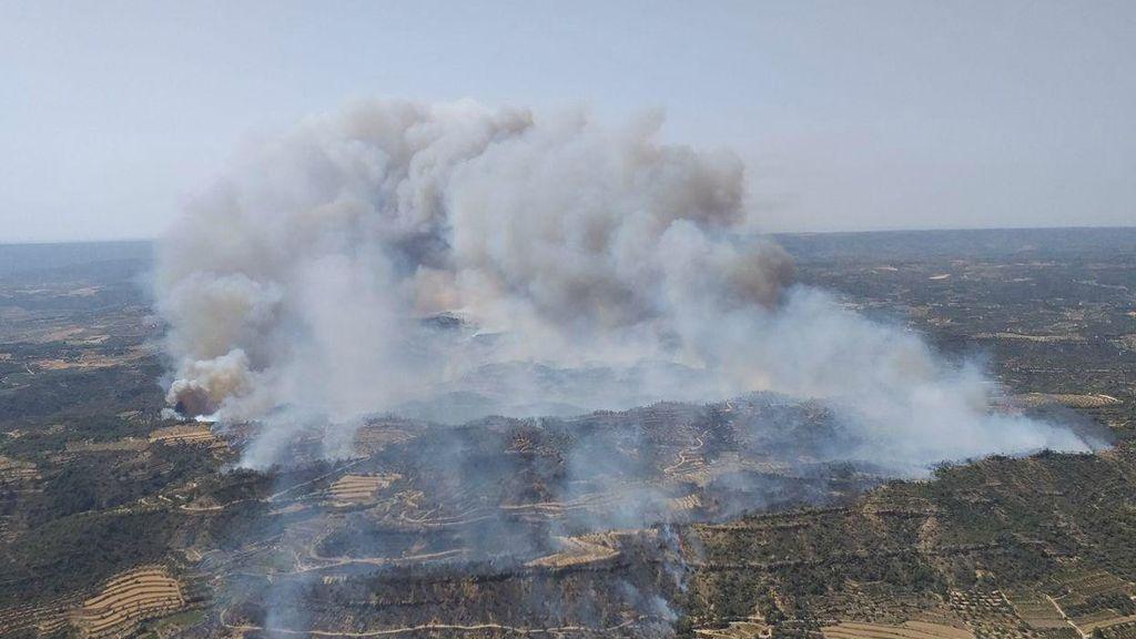 Declarado el primer gran incendio del verano en el delta del Ebro