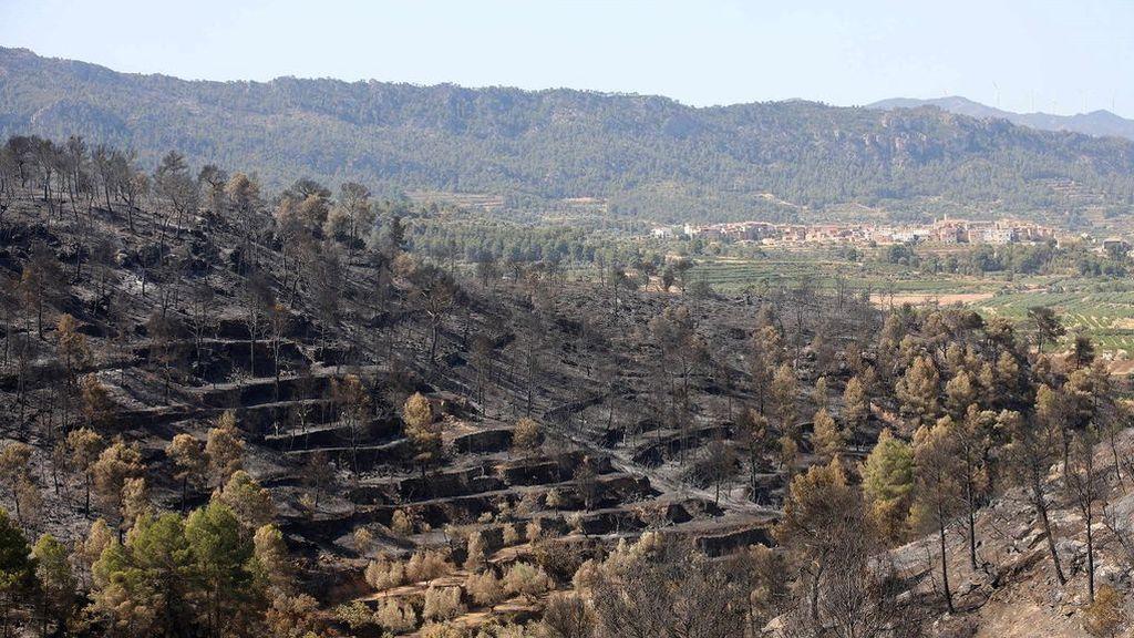 Estabilizado el incendio de Tarragona tras arrasar más de 6000 hectáreas