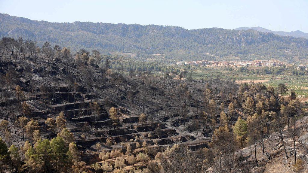 Perimetrado y en fase de estabilización el incendio de Tarragona