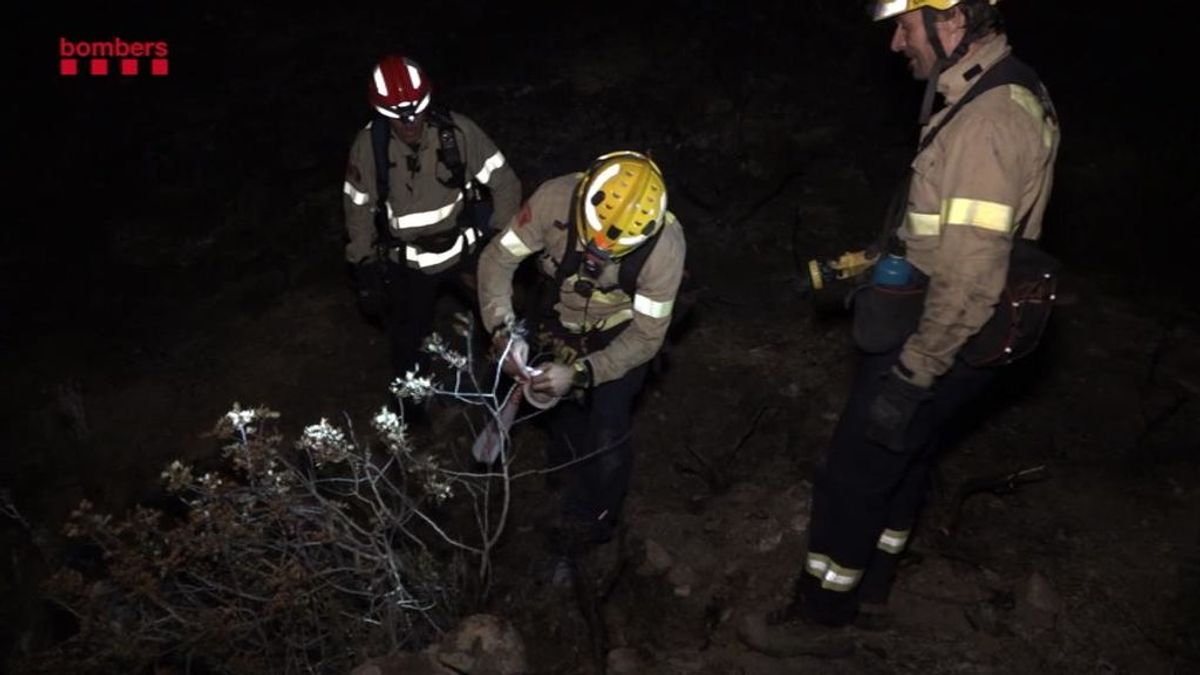 Los bomberos consiguen controlar el 90% del incendio de Tarragona